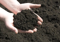 Topsoil your yard today! Bobcat services