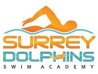 Swimming Teacher Level 2 required