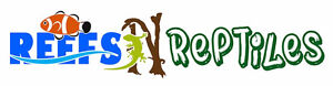 Reefs N Reptiles today only everything on sale !