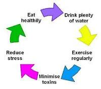 Need More Energy, Want to Live a Longer Life