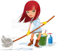 Cleaning and Organizanizing Services