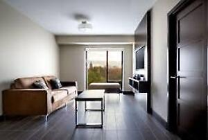 Luxe London - 1 Bedroom Summer Sublet - ALL INCLUSIVE!
