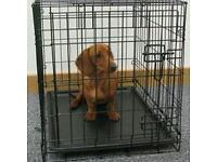 Puppy crate £10