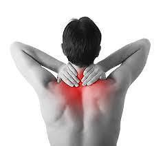 Sean's Advanced Remedial Massage Mount Waverley Monash Area Preview