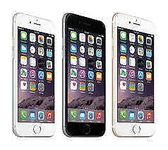 IPHONE 6 PLUS CELL PHONE. UNLOCKED WORLD WIDE. 64 GB. NEW IN BOX WITH WARRANTY. SUPER SALE $449.00 NO TAX
