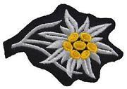 WW2 German Uniform