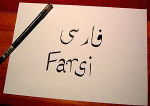 Farsi (Persian) Language Tutor and Interpreter London Ontario image 1