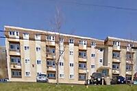 Glenview Dr and Renfrew St: 11 Glenview Drive, 1BR