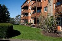 Franklyn Ct and Crystal Dr: 2 - 4 Franklyn Court, Bachelor / Stu