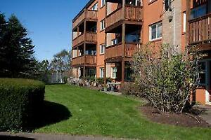 Franklyn Ct and Crystal Dr: 2 - 4 Franklyn Court, 1BR