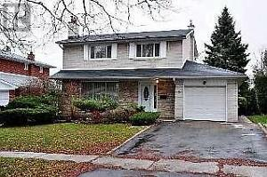 DonMills RD & McNicoll Ave 4 Bedrooms Nice House Available Now!!