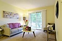 Two bedroom apartment available in beautifully-maintained buildi