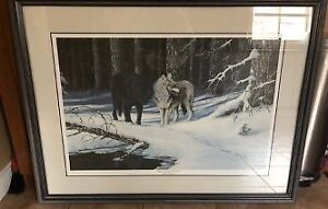 """""""Eyes Among Timbers"""" Framed Print by R.Doherty"""