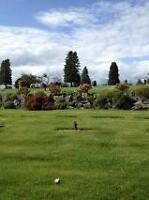 Forest Lawn Cemetery Plot