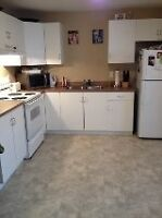 Southlands Bright Spacious 2 BR Apt  with Private Double Parking