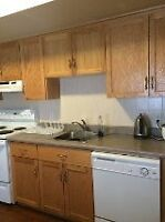 Great Room for Sublet near Queen's Campus and Downtown