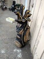 Nancy Lopez Torri II 10-piece hybrid Full Golf Clubs Salmon Arm