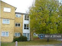 1 bedroom flat in Abington, Northampton, NN3 (1 bed)