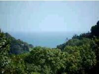Panoramic Views Welcome You at LOOE BAY