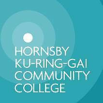 English Pronunciation class - $35 Hornsby Hornsby Area Preview