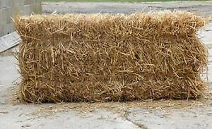PREMIUM WHEAT STRAW $4.50 per square bale