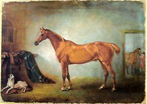 How To Paint Horse Oil Painting