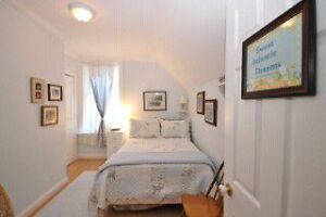 Executive home for rent in Tamworth Kingston Kingston Area image 1