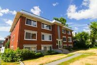 Newly renovated one bedroom apartment for rent in Ottawa's East