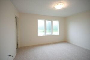 3 Bdrm Mattamy Home, close to 401, available Feb 1st! Cambridge Kitchener Area image 5