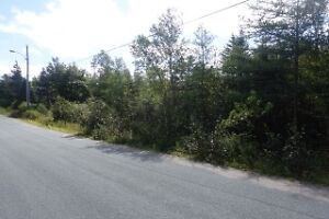 1/2 ACRE BUILDING LOT IN HOLYROOD $30,000 MLS 1135622 St. John's Newfoundland image 2