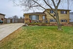 ATTENTION first-time home buyers LARGE LOT-Glencoe