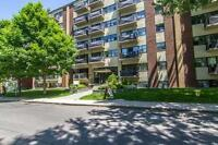 Newly renovated one bedroom apartment for rent in Hintonburg!