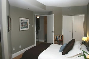 DOWNTOWN FURNISHED ONE BEDROOM