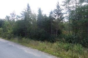 1/2 ACRE BUILDING LOT IN HOLYROOD $30,000 MLS 1135622 St. John's Newfoundland image 3