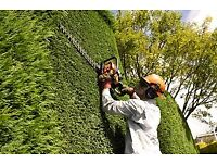 Hedge Cutting and Tree Services