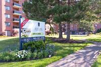 Large two bedroom apartment for rent in fantastic St. Catharine'