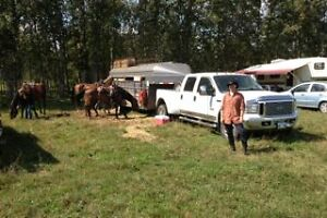 Horse trailer for sale $4,500