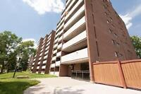 Spacious & bright one bedroom apartment for rent in Guelph!