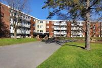 Bright & clean 1 bedroom apartment for rent in amenity filled bu