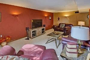 Feel the freedom -Spacious 4BR Raised Ranch with large lot London Ontario image 12