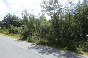 1/2 ACRE BUILDING LOT IN HOLYROOD $30,000 MLS 1135622
