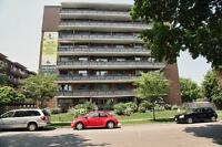 Newly renovated two bedroom apartments for rent in convenient Sa