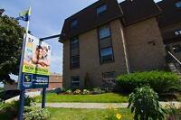 Large one bedroom apartment for rent in Belleville!