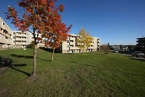 Beautiful 1, 2 & 3 bedroom apartments for rent Fort McMurray