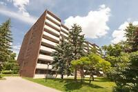 Large two bedroom suites available in excellent Guelph location!