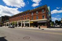 One bedroom apartment for rent on Bank Street downtown Ottawa!