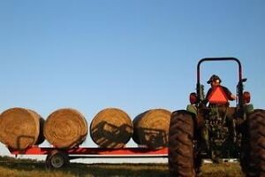 Hay for sale first cut