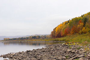 Beautiful and Quiet Waterfront on the Saint-John river
