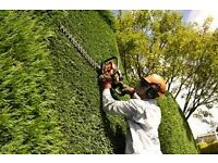 Gardening services- fencing, hedges and tree care, garden clearence, /driveway/patio cleaning