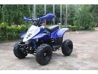 New 110cc kids thundercat quad bikes free uk delivery